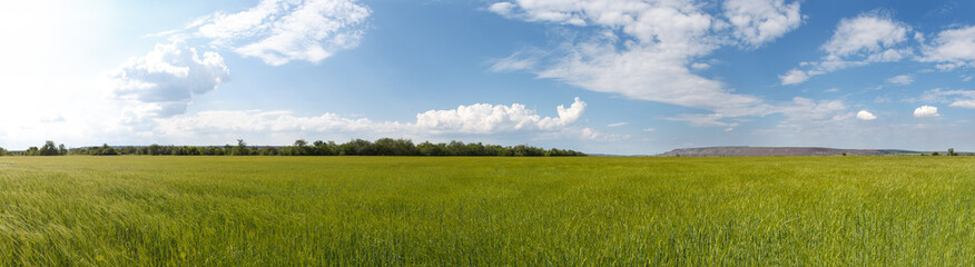 Photo panorama of fields on a sunny day.