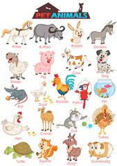 Wide variety of pet animals