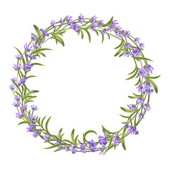 Wall Mural - Lavender wreath. Vector illustration for decorations