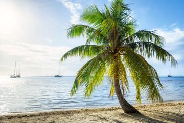 Wall Mural - Sommer, Sonne, Strand und Meer im Urlaub