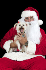 Santa Claus with white long haired small dog Isolated on black background