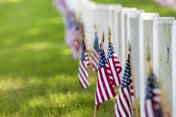National Cemetery with American Flags