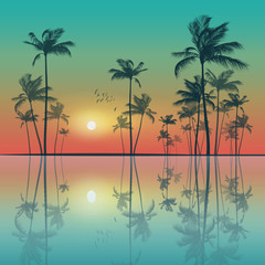 Wall Mural - Tropical palm trees  at sunset. Highly detailed and editable