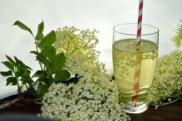 Homemade elderflower drink