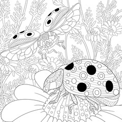 Zentangle stylized cartoon flying ladybugs and daisy flowers. Hand drawn sketch for adult antistress coloring page, T-shirt emblem, logo or tattoo with doodle, zentangle, floral design elements.