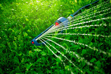 Lawn sprinkler spaying water over green grass.