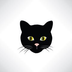 Cat. Wild cats face isolated. Pet design element