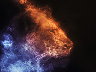 Lioness abstract smoke illustration - blue and orange smoke