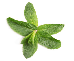 Fresh mint leaves on white background, top view