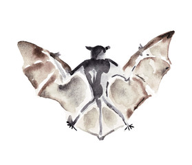Watercolor illustration of a bat