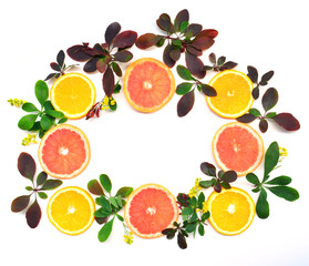Citrus and barberry frame