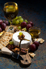 Camembert cheese, snacks and a glass of white wine, vertical