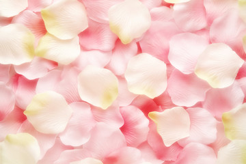Background texture of pink and white rose petals