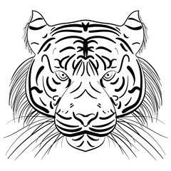 Vector stylized face of ink sketch tiger