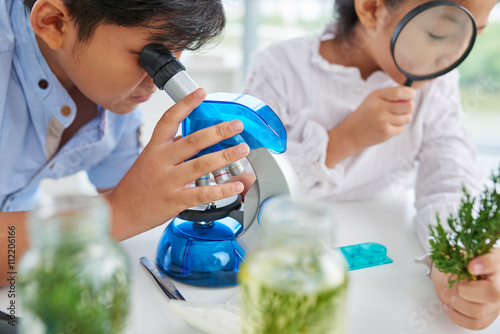 Close-up image of pupils examining plants with microscope and magnifying glass