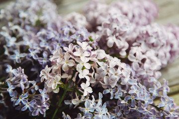 Mother day background with lilac flowers