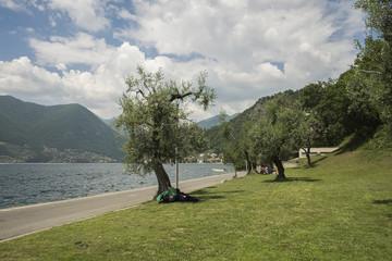 Montisola - Vista del Lago