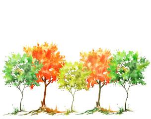 Группа акварельных деревьев