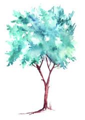 Дерево акварелью на изолированном белом фоне