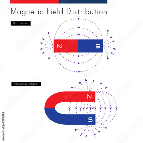 Shows the distribution of magnetic fields for a bar magnet and a shows the distribution of magnetic fields for a bar magnet and a horseshoe magnet ccuart Image collections