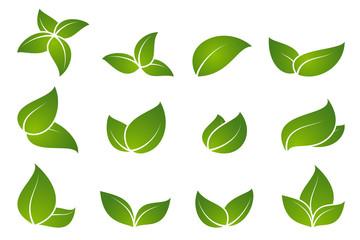 Green leaf icon set.