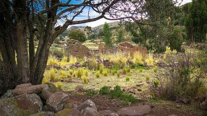 Ruines villages en pleine nature