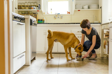 Caucasian woman feeding dog in kitchen