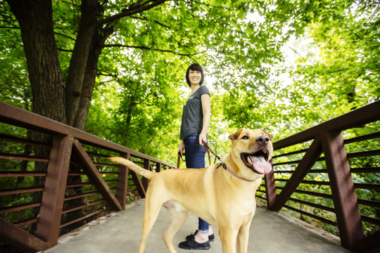 Caucasian woman walking dog on bridge