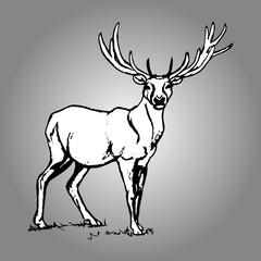 Forest deer figure