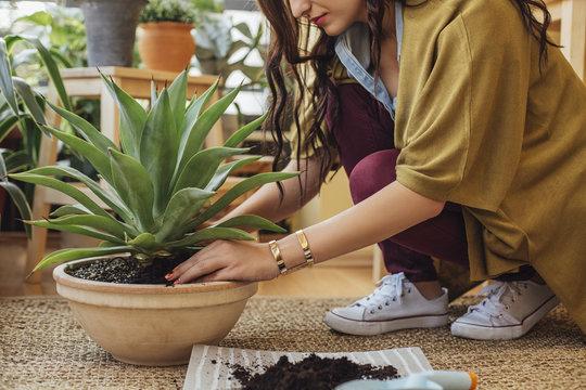 Woman potting plant