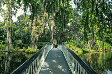 Bridge crossing pond