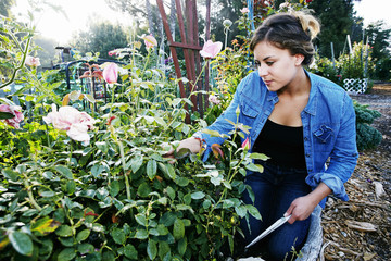 Mixed race woman examining flowers in garden