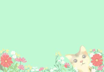 猫と花 / メッセージカード・葉書サイズ