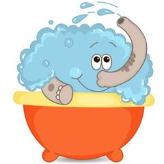 Elephant clean