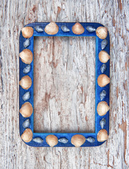Grunge picture frame with seashells on old wooden background