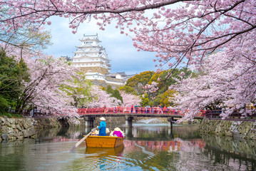 Himeji Castle with beautiful cherry blossom in spring season Fototapete