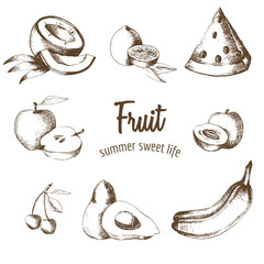Fruit set. Lemon, watermelon, apple, apricot, avocado, cherry, coconut, banana in graphic style. Natural product. Summer fruit. Sketch. Drawing by hand. Vector graphics.