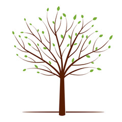 Shape of Tree and Green Leafs. Vector Illustration.