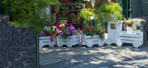 Il Trenino bianco dei fiori