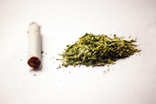 a handful of medical cannabis marijuana
