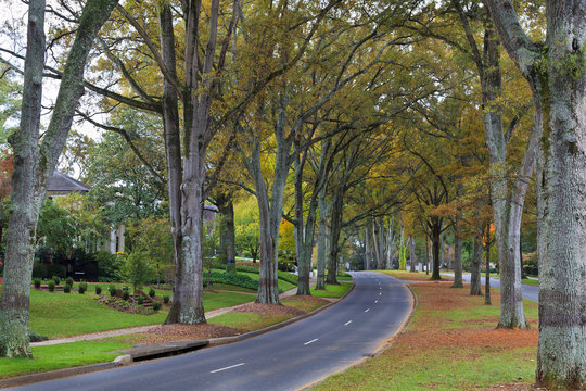 Queens Road West in Charlotte, North Carolina in Autumn