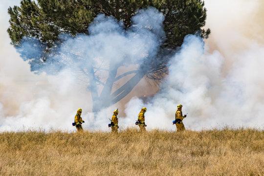 Firefighter Fighting Wildland Forest Grass Fire