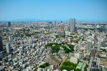 Mori Building in Roppongi from Tokyo Tower, Tokyo, Japan