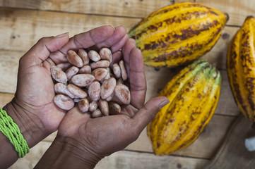 Agricultor de cacao