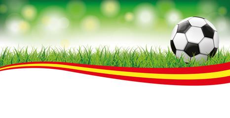 Football Grass Bokeh Header Spain