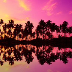 Tropical coconut palm trees silhouettes with reflection in water at sunset light