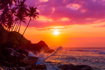 Tropical beach at sunset with palm trees silhouettes and shiny waves splashes
