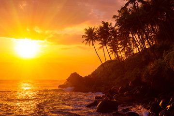 Shiny colorful sunset on tropical beach with palm trees silhouettes