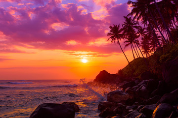 Tropical beach at sunset with palm trees silhouettes and shiny waves spashes