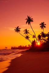 Warm sunset on tropical beach